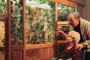 Nursing Home Aviary